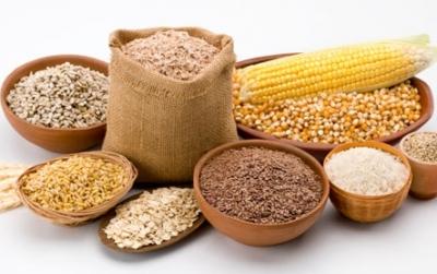 Comert si transport de cereale